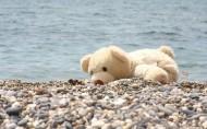 可愛玩具熊圖片_24張