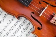 小提琴图片_71张