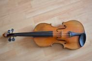 优雅的小提琴图片_11张