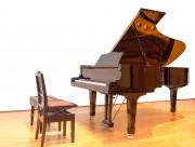 优雅的钢琴展示图片_15张