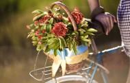载满鲜花的自行车图片_13张