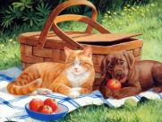 猫咪和它的小伙伴手绘图片_35张