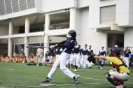 棒球运动图片_10张