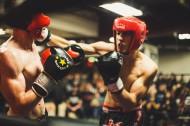 拳击运动图片_10张