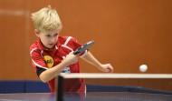 正在打乒乓球的小孩圖片_12張