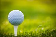 高爾夫球運動圖片_10張