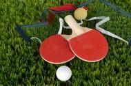 放在一起的乒乓球和球拍图片_10张