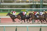 日本赛马比赛的图片_11张
