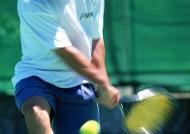 網球運動圖片_24張