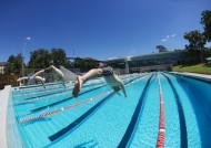 游泳图片_24张