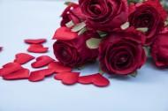 红色的玫瑰花瓣图片_10张