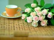 玫瑰花圖片_21張