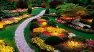 美麗的花園圖片_8張