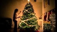 装饰美丽的圣诞树图片_16张