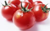 红红的番茄图片_16张