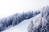 自然雪景风景图片_14张