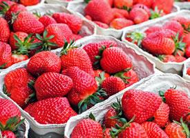 一组红红的香甜可口的草莓图片欣赏
