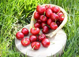 一组红红的营养丰富的樱桃图片欣赏