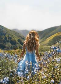 要像风一样,一年四季脚步不停,去找寻那个发光的自己