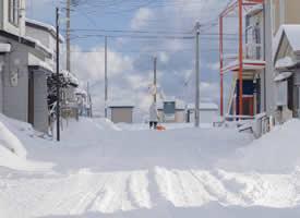 北海道的一片白色,干净得没有一点瑕疵