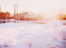 这样的雪景看起来是一种浪漫的感觉