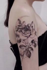 女生素花系列的18组纹身图片