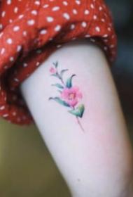 27张女生爱好的超繁复小清爽纹身图片