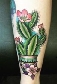 沙漠之花仙人掌的纹身图案9张