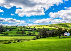 远离喧嚣,奔跑在广阔的草原上,惬意舒爽十分安逸