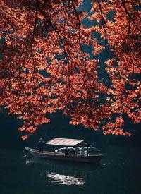 旅行摄影师 rkrkrk 镜头下的传统日本 