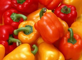 吃起来一点也不辣的灯笼辣椒图片欣赏