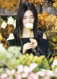 谢娜花海温婉优雅写真高清图片欣赏
