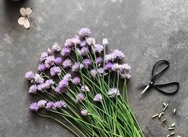 一组唯美的好看花束高清图片欣赏