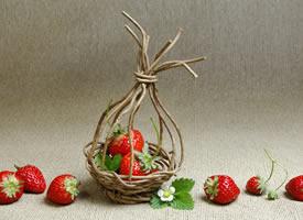 一组红彤彤酸酸甜甜的刚摘下来的草莓图片