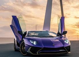 紫色尤物 Lamborghini Aventador SV ????图片