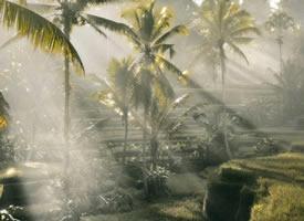 一組巴厘島漂亮唯美的陽光高清圖片欣賞