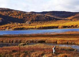 一组呼伦贝乐的美丽大草原图片欣赏