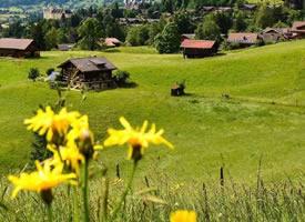 瑞士的春天简直美的一塌涂地