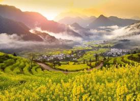 江岭早晨恍若仙境的风景图片欣赏