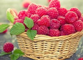 一组红彤彤的好看的树莓图片欣赏