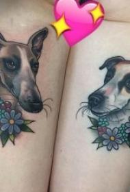 动物纹身图案 各部位彩色chool纹身动植物纹身图案