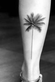 小清新黑色的小椰子樹紋身圖片