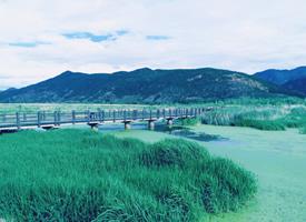 泸沽湖草海的春日风光美景图片欣赏