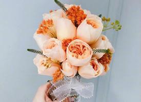 一组简单小清新唯美花束图片欣赏