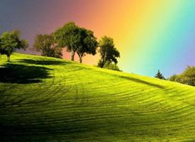 一组超级美的绿色大草地图片欣赏