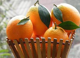 一组超级新鲜的橙子高清图片欣赏