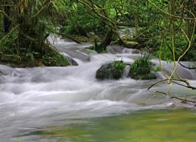唯美大自然水上河流森林图片欣赏