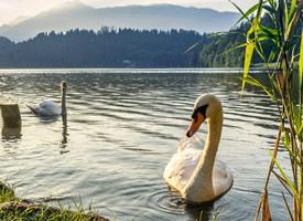 一组清新美丽的自然湖边美景图片欣赏
