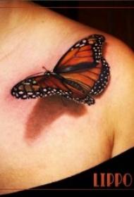 蝴蝶紋身圖案 女生身上漂亮的立體蝴蝶紋身圖案
