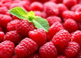 吃起来是酸酸甜甜的树莓图片
